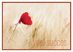 veel succes-small