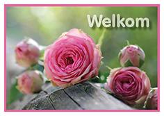 welkom-small
